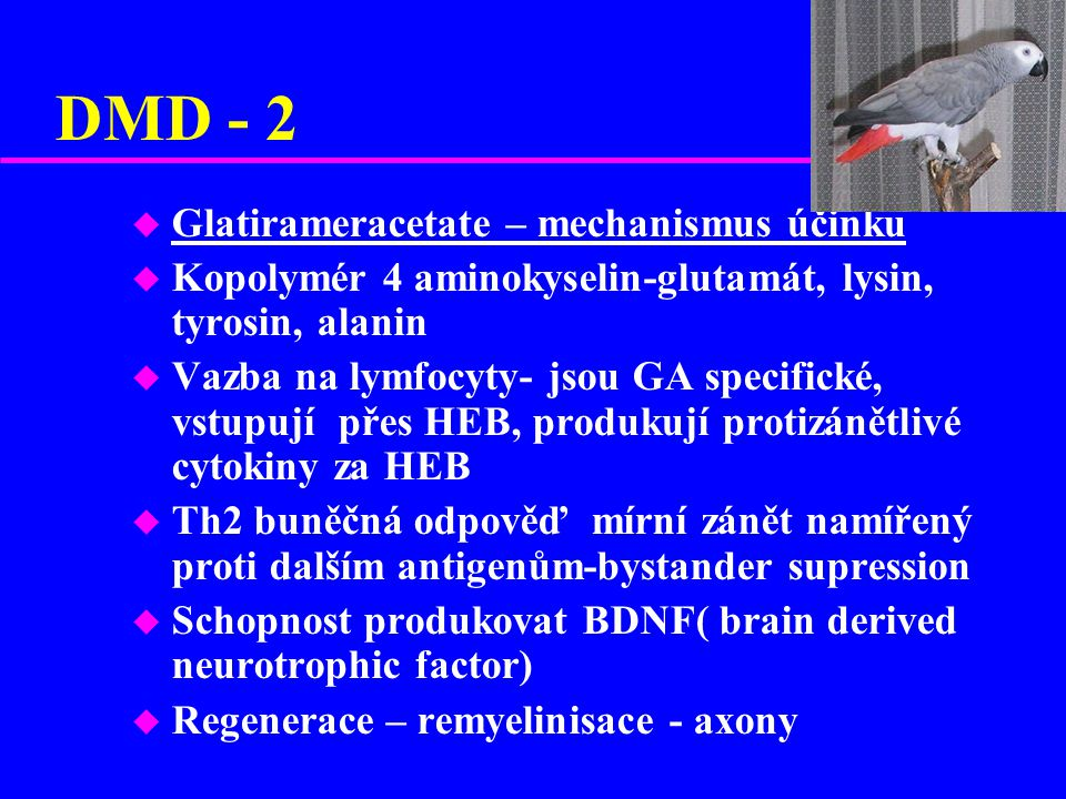 DMD - 2 u Glatirameracetate – mechanismus účinku u Kopolymér 4 aminokyselin-glutamát, lysin, tyrosin, alanin u Vazba na lymfocyty- jsou GA specifické,