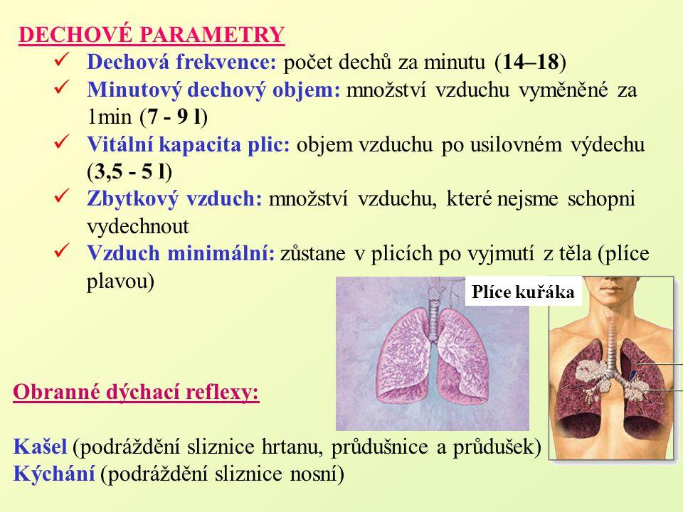 DECHOVÉ PARAMETRY Dechová frekvence: počet dechů za minutu (14–18) Minutový dechový objem: množství vzduchu vyměněné za 1min (7 - 9 l) Vitální kapacit