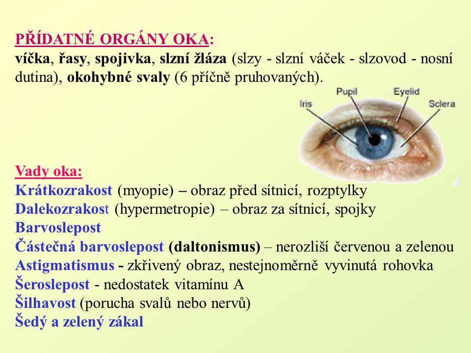 PŘÍDATNÉ ORGÁNY OKA: víčka, řasy, spojivka, slzní žláza (slzy - slzní váček - slzovod - nosní dutina), okohybné svaly (6 příčně pruhovaných). Vady oka