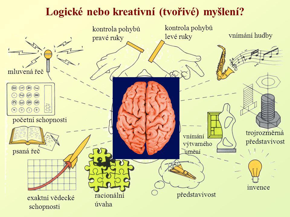 kontrola pohybů levé ruky kontrola pohybů pravé ruky vnímání hudby invence vnímání výtvarného umění trojrozměrná představivost exaktní vědecké schopno