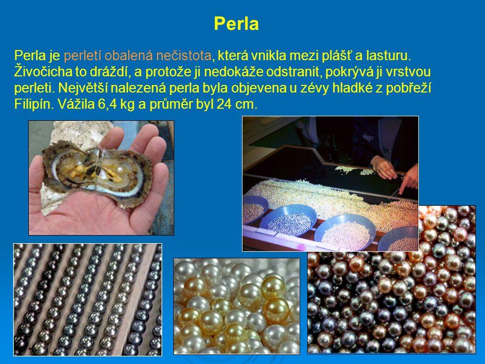 Perla Perla je perletí obalená nečistota, která vnikla mezi plášť a lasturu. Živočicha to dráždí, a protože ji nedokáže odstranit, pokrývá ji vrstvou