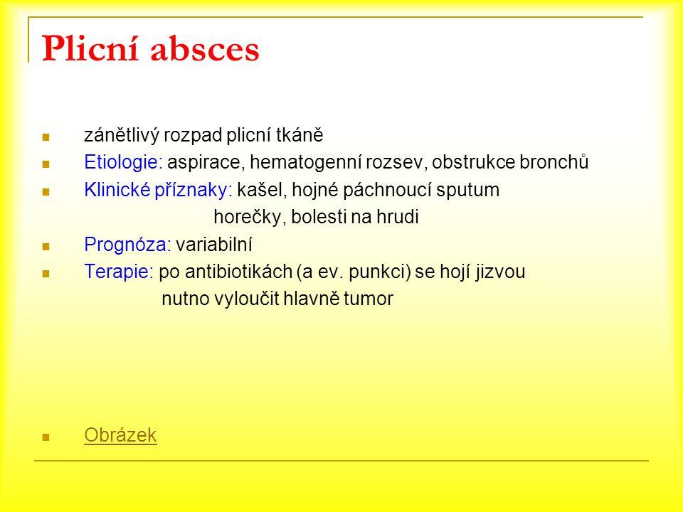 Plicní absces zánětlivý rozpad plicní tkáně Etiologie: aspirace, hematogenní rozsev, obstrukce bronchů Klinické příznaky: kašel, hojné páchnoucí sputu