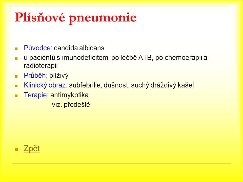 Plísňové pneumonie Původce: candida albicans u pacientů s imunodeficitem, po léčbě ATB, po chemoerapii a radioterapii Průběh: plíživý Klinický obraz:
