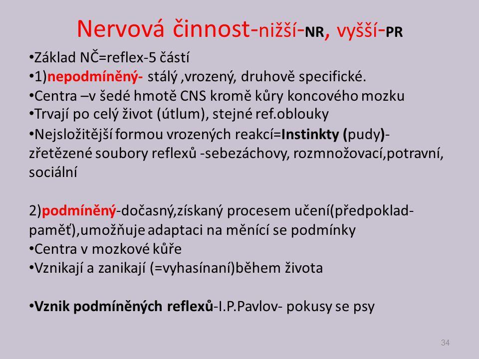 Nervová činnost- nižší - NR, vyšší - PR Základ NČ=reflex-5 částí 1)nepodmíněný- stálý,vrozený, druhově specifické. Centra –v šedé hmotě CNS kromě kůry