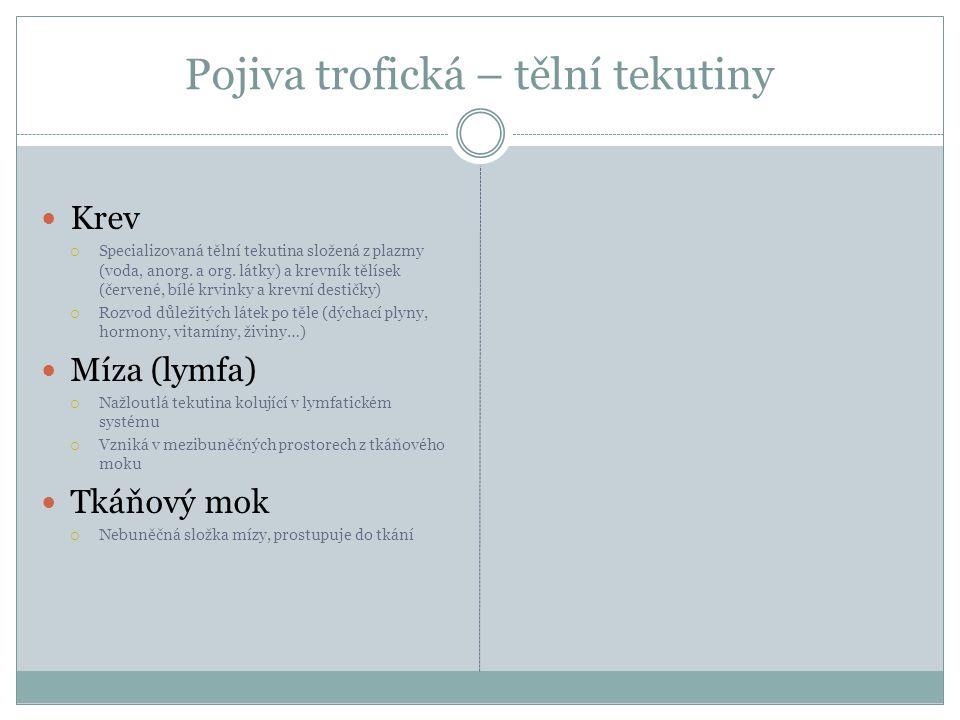 Zdroje Vazivo  AUTOR NEUVEDEN.strucneocloveku.blog.cz [online].