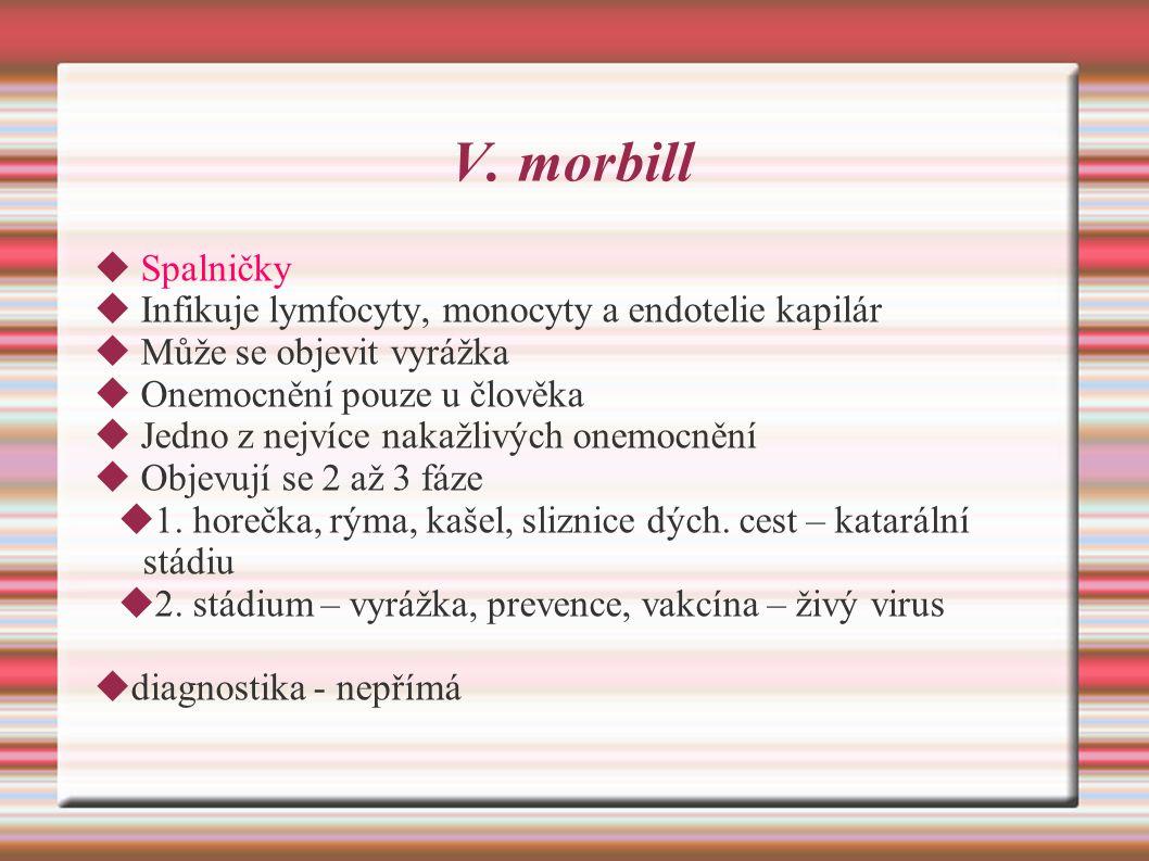 V. morbill  Spalničky  Infikuje lymfocyty, monocyty a endotelie kapilár  Může se objevit vyrážka  Onemocnění pouze u člověka  Jedno z nejvíce nak