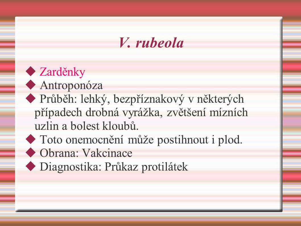 V. rubeola  Zarděnky  Antroponóza  Průběh: lehký, bezpříznakový v některých případech drobná vyrážka, zvětšení mízních uzlin a bolest kloubů.  Tot