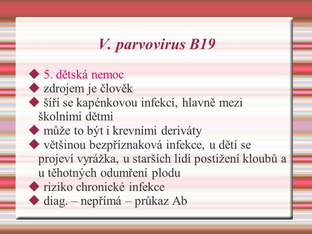 V.parvovirus B19  5.