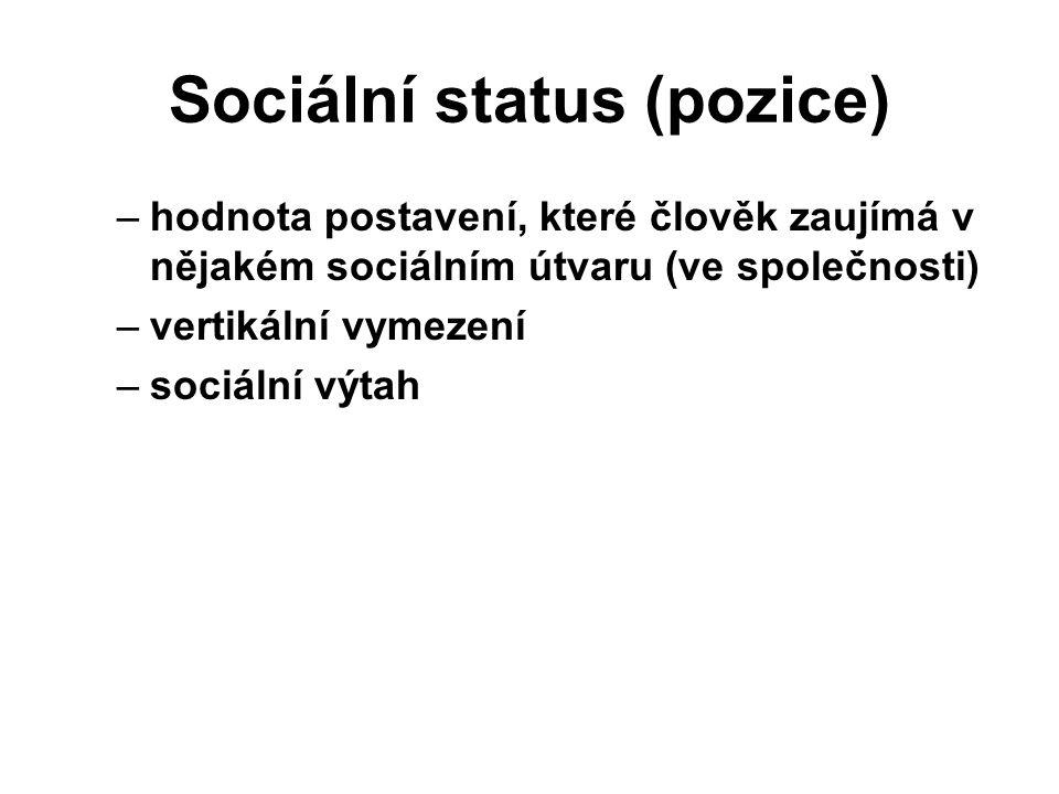 Sociální status (pozice) –hodnota postavení, které člověk zaujímá v nějakém sociálním útvaru (ve společnosti) –vertikální vymezení –sociální výtah prezident bezdomovec