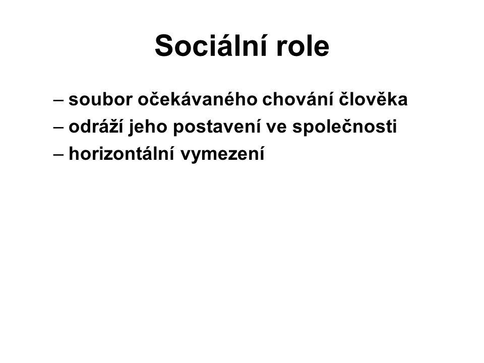 Sociální role –soubor očekávaného chování člověka –odráží jeho postavení ve společnosti –horizontální vymezení dcera sestra přítelkyně kamarádka studentka učitelka