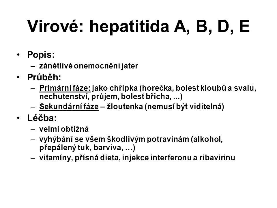Virové: hepatitida A, B, D, E Popis: –zánětlivé onemocnění jater Průběh: –Primární fáze: jako chřipka (horečka, bolest kloubů a svalů, nechutenství, průjem, bolest břicha,...) –Sekundární fáze – žloutenka (nemusí být viditelná) Léčba: –velmi obtížná –vyhýbání se všem škodlivým potravinám (alkohol, přepálený tuk, barviva, …) –vitamíny, přísná dieta, injekce interferonu a ribavirinu