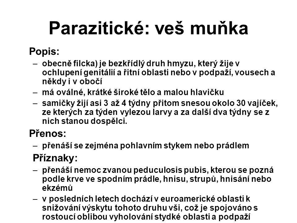 Parazitické: veš muňka Popis: –obecně filcka) je bezkřídlý druh hmyzu, který žije v ochlupení genitálií a řitní oblasti nebo v podpaží, vousech a někd