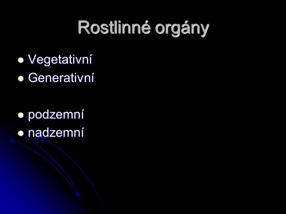 Kořen Funkce nasávací, vodivá, mechanická, zásobní Funkce nasávací, vodivá, mechanická, zásobní Nemá kutikulu, průduchy, fotosyntetická barviva – heterotrofní Nemá kutikulu, průduchy, fotosyntetická barviva – heterotrofní Klíčení – radikula (kořínek) – hlavní kořen – postranní kořeny Klíčení – radikula (kořínek) – hlavní kořen – postranní kořeny