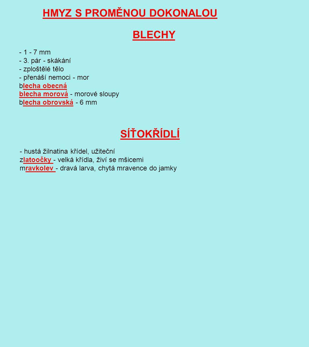HMYZ S PROMĚNOU DOKONALOU BLECHY - 1 - 7 mm - 3. pár - skákání - zploštělé tělo - přenáší nemoci - mor blecha obecná blecha morová - morové sloupy ble