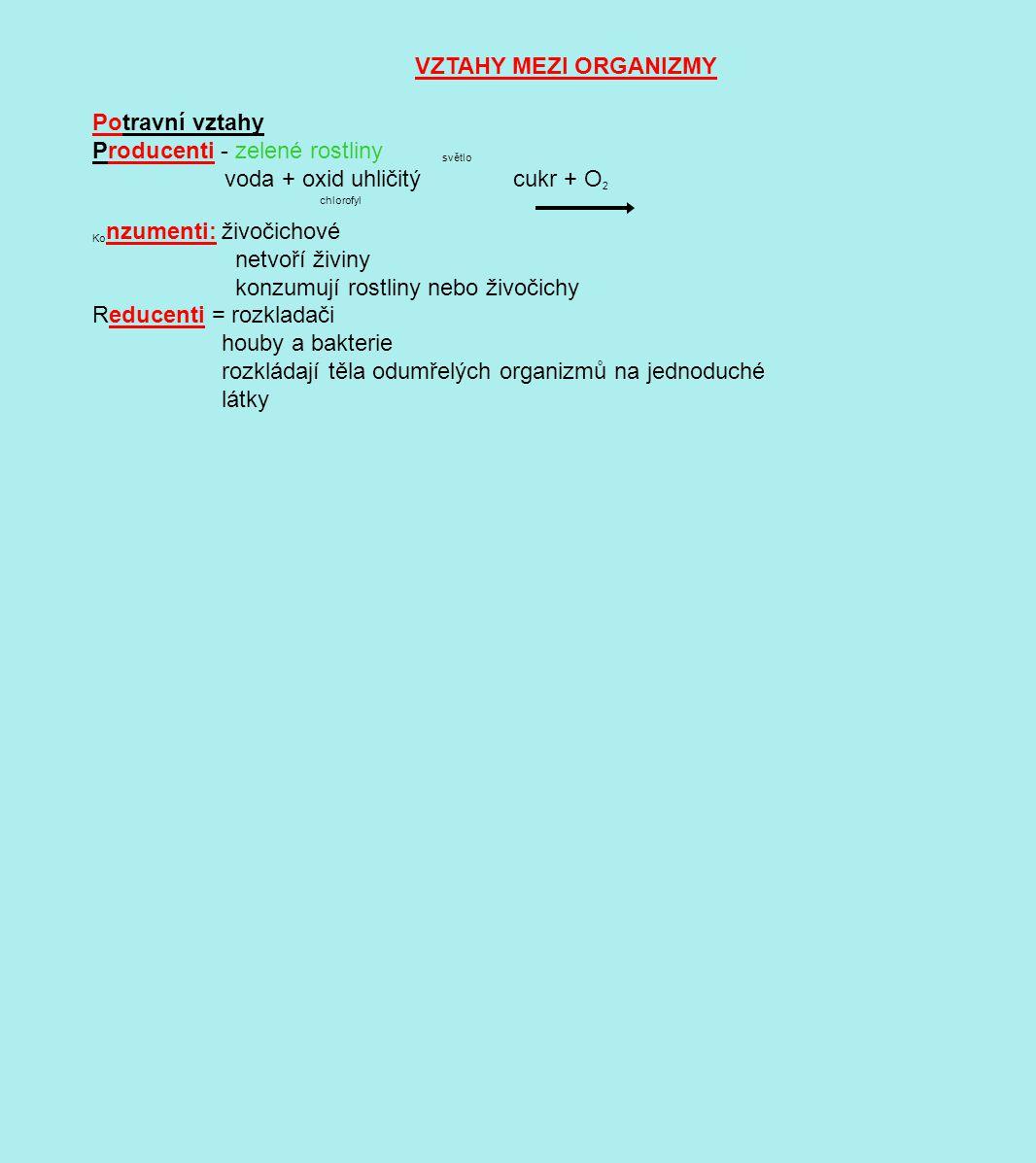 VZTAHY MEZI ORGANIZMY Potravní vztahy Producenti - zelené rostliny světlo voda + oxid uhličitý cukr + O 2 chlorofyl Ko nzumenti: živočichové netvoří živiny konzumují rostliny nebo živočichy Reducenti = rozkladači houby a bakterie rozkládají těla odumřelých organizmů na jednoduché látky