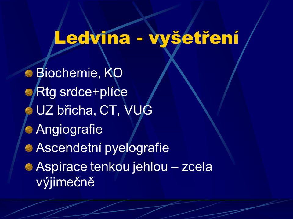 Ledvina - vyšetření Biochemie, KO Rtg srdce+plíce UZ břicha, CT, VUG Angiografie Ascendetní pyelografie Aspirace tenkou jehlou – zcela výjimečně