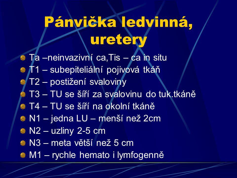 Pánvička ledvinná, uretery Ta –neinvazivní ca,Tis – ca in situ T1 – subepiteliální pojivová tkáň T2 – postižení svaloviny T3 – TU se šíří za svalovinu