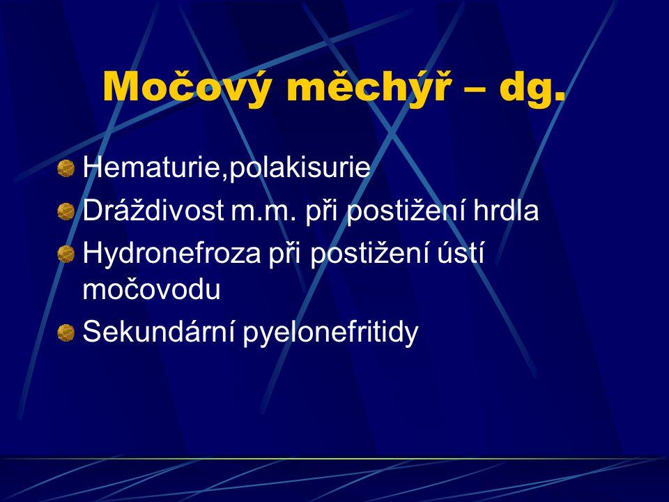 Močový měchýř – dg. Hematurie,polakisurie Dráždivost m.m. při postižení hrdla Hydronefroza při postižení ústí močovodu Sekundární pyelonefritidy