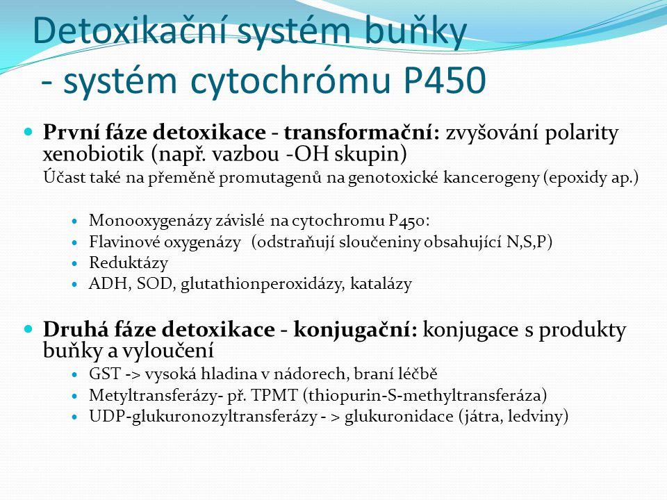 Detoxikační systém buňky - systém cytochrómu P450 První fáze detoxikace - transformační: zvyšování polarity xenobiotik (např. vazbou -OH skupin) Účast