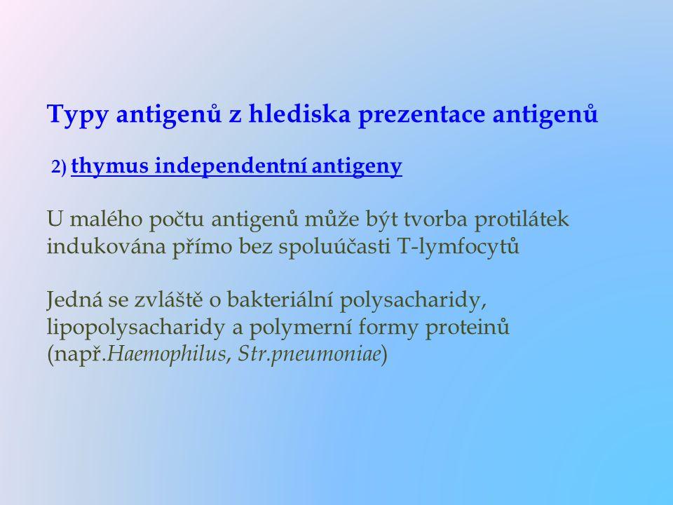 Typy antigenů z hlediska prezentace antigenů 2) thymus independentní antigeny U malého počtu antigenů může být tvorba protilátek indukována přímo bez