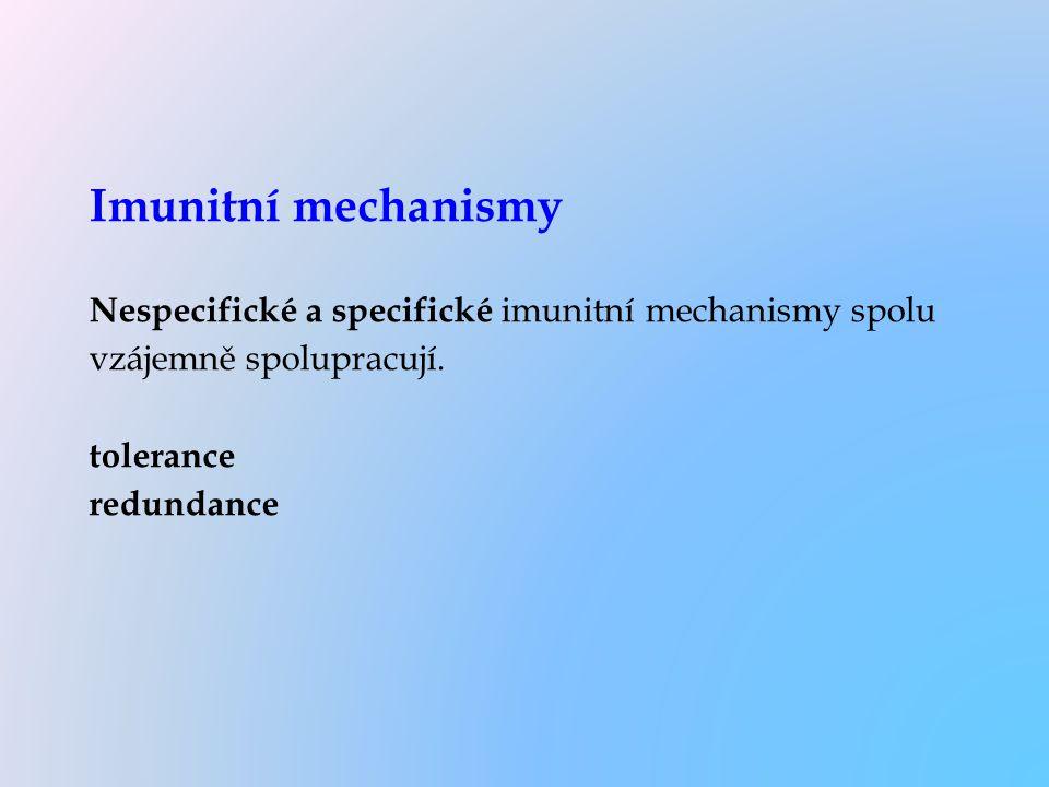 Imunitní mechanismy Nespecifické a specifické imunitní mechanismy spolu vzájemně spolupracují. tolerance redundance