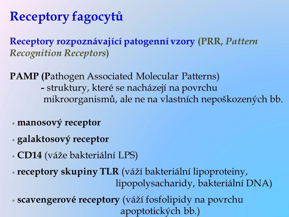 Receptory fagocytů Receptory rozpoznávající patogenní vzory (PRR, Pattern Recognition Receptors ) PAMP (P athogen Associated Molecular Patterns) - str