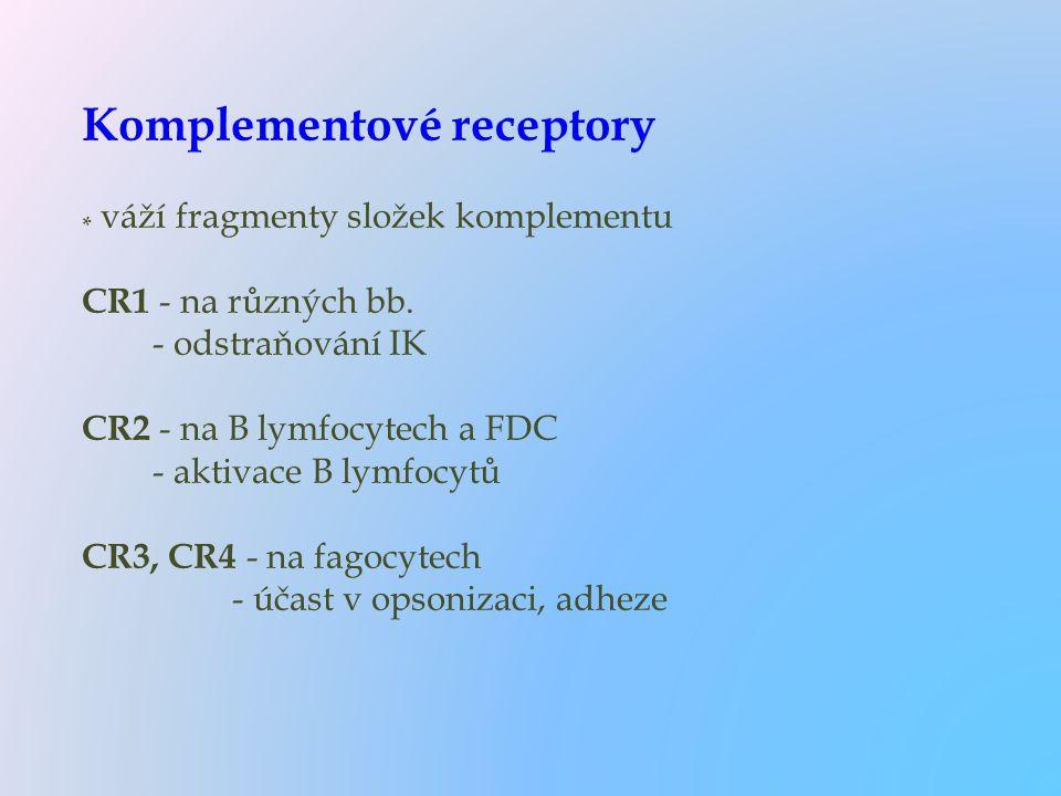 Komplementové receptory * váží fragmenty složek komplementu CR1 - na různých bb. - odstraňování IK CR2 - na B lymfocytech a FDC - aktivace B lymfocytů