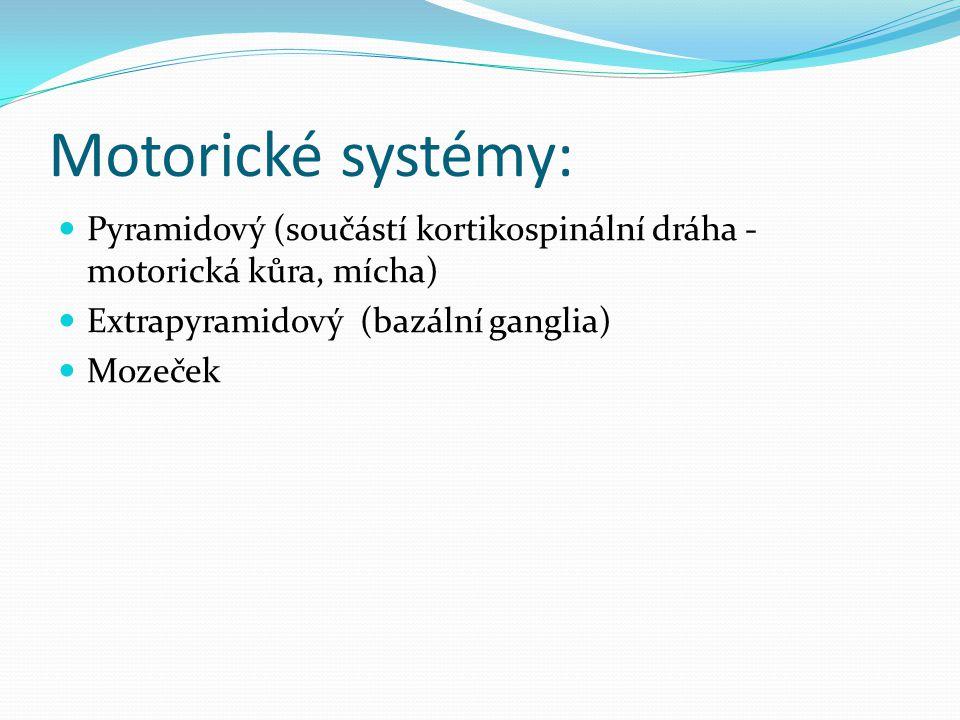 BAZÁLNÍ GANGLIA Poškození: Subkortikální (podkorová) demence Extrapyramidové příznaky: Hypotonicko-hyperkinetické syndromy – snížení svalového tonu + nadbytečné mimovolní pohyby (Huntingtonova nemoc - chorea) Hypertonicko-hypokynetický syndrom – zvýšený svalový tonus + snížená hybnost (Parkinsonova porucha)