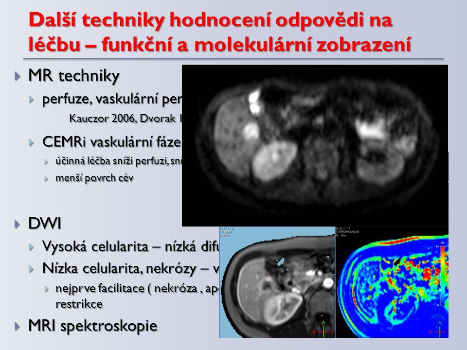 Další techniky hodnocení odpovědi na léčbu – funkční a molekulární zobrazení  MR techniky  perfuze, vaskulární permeabilita, vaskulární volume a flo
