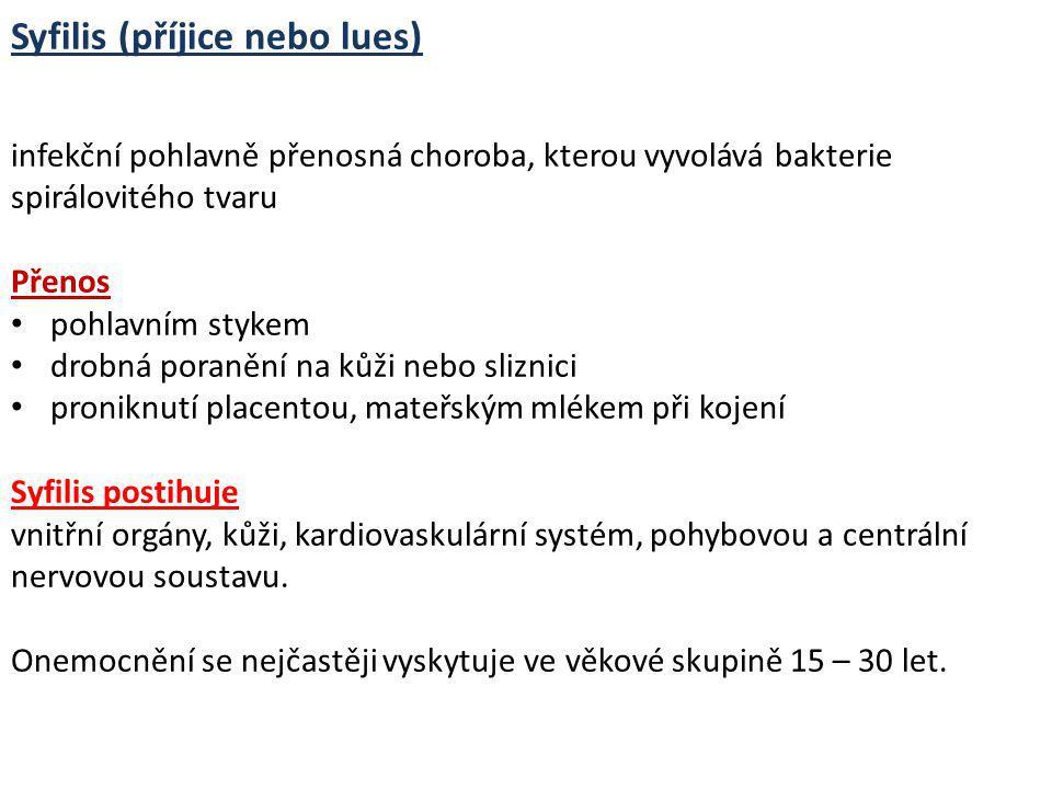 Syfilis (příjice nebo lues) infekční pohlavně přenosná choroba, kterou vyvolává bakterie spirálovitého tvaru Přenos pohlavním stykem drobná poranění n