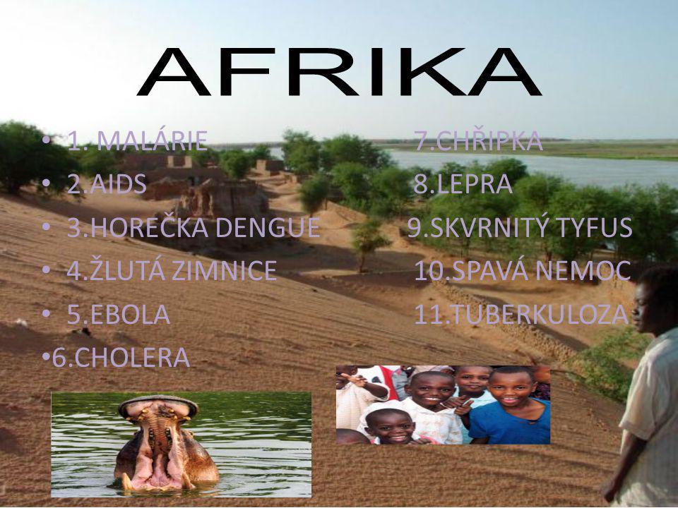 Malárie je závažné parazitické onemocnění, kterému podlehne mnoho nakažených.