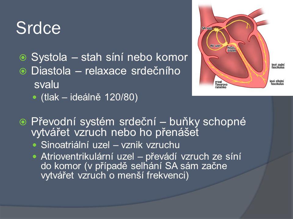 Srdce  Systola – stah síní nebo komor  Diastola – relaxace srdečního svalu (tlak – ideálně 120/80)  Převodní systém srdeční – buňky schopné vytvářet vzruch nebo ho přenášet Sinoatriální uzel – vznik vzruchu Atrioventrikulární uzel – převádí vzruch ze síní do komor (v případě selhání SA sám začne vytvářet vzruch o menší frekvenci)