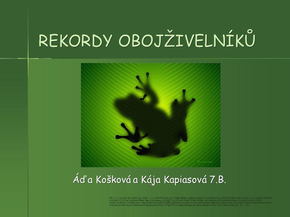 REKORDY OBOJŽIVELNÍKŮ Áďa Košková a Kája Kapiasová 7.B. http://www.google.cz/imgres?imgurl=http://www.eyesontutorials.com/images/Effects/VladStudio/tu