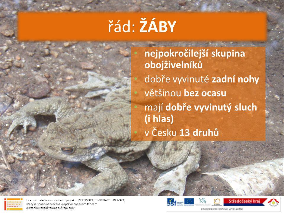 nejpokročilejší skupina obojživelníků dobře vyvinuté zadní nohy většinou bez ocasu mají dobře vyvinutý sluch (i hlas) v Česku 13 druhů řád: ŽÁBY Učebn