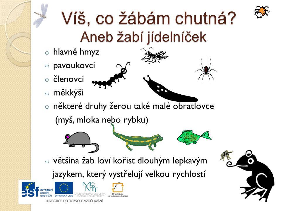 Odhadni: o Kolik vajíček klade samice skokana skřehotavého? o Kam klade vajíčka? o Za jak dlouho se líhnou larvy z vajíček? o Jak se larvy nazývají? o