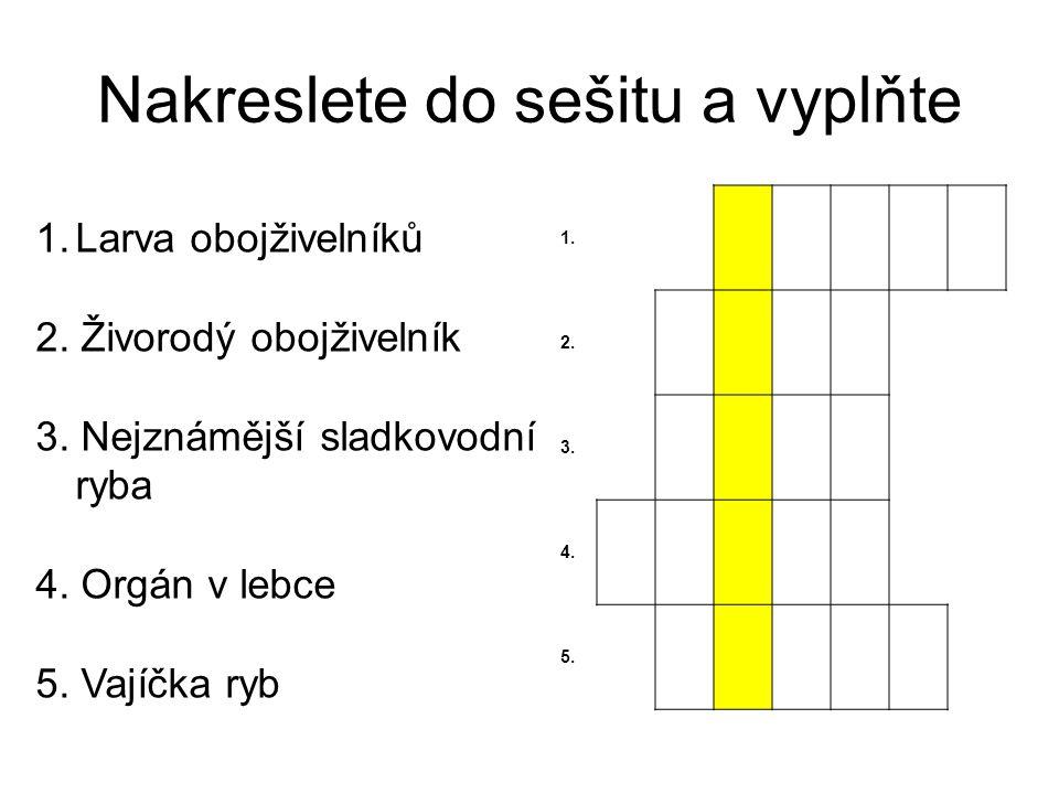 Nakreslete do sešitu a vyplňte 1. 2. 3. 4. 5. 1.Larva obojživelníků 2. Živorodý obojživelník 3. Nejznámější sladkovodní ryba 4. Orgán v lebce 5. Vajíč