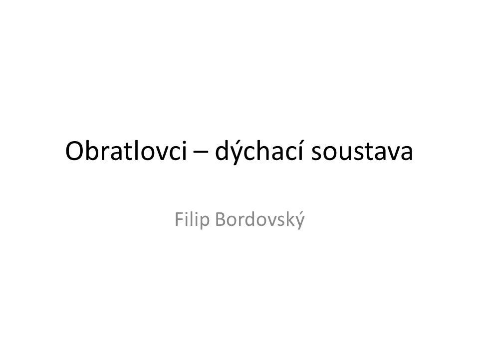 Obratlovci – dýchací soustava Filip Bordovský