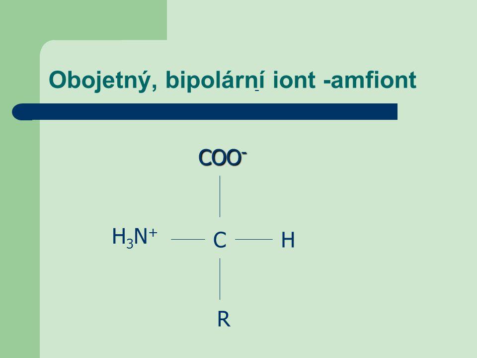 Obojetný, bipolární iont -amfiont COO - CH - H3N+H3N+ R