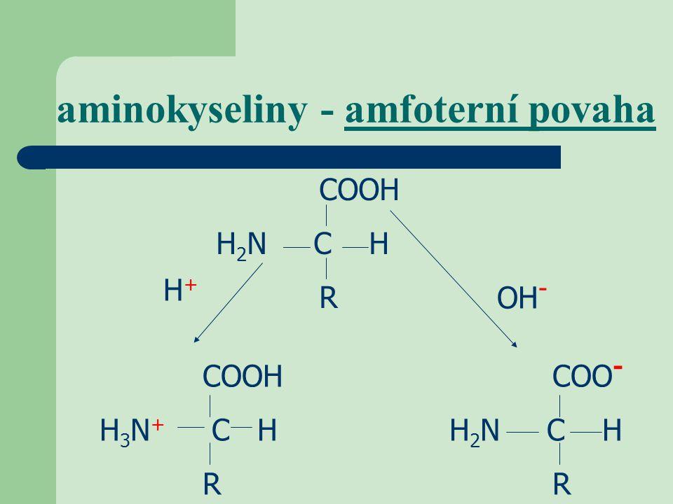 aminokyseliny - amfoterní povaha COOH H 2 N C H R H+H+ OH - COOH H 3 N + C H R COO - H 2 N C H R
