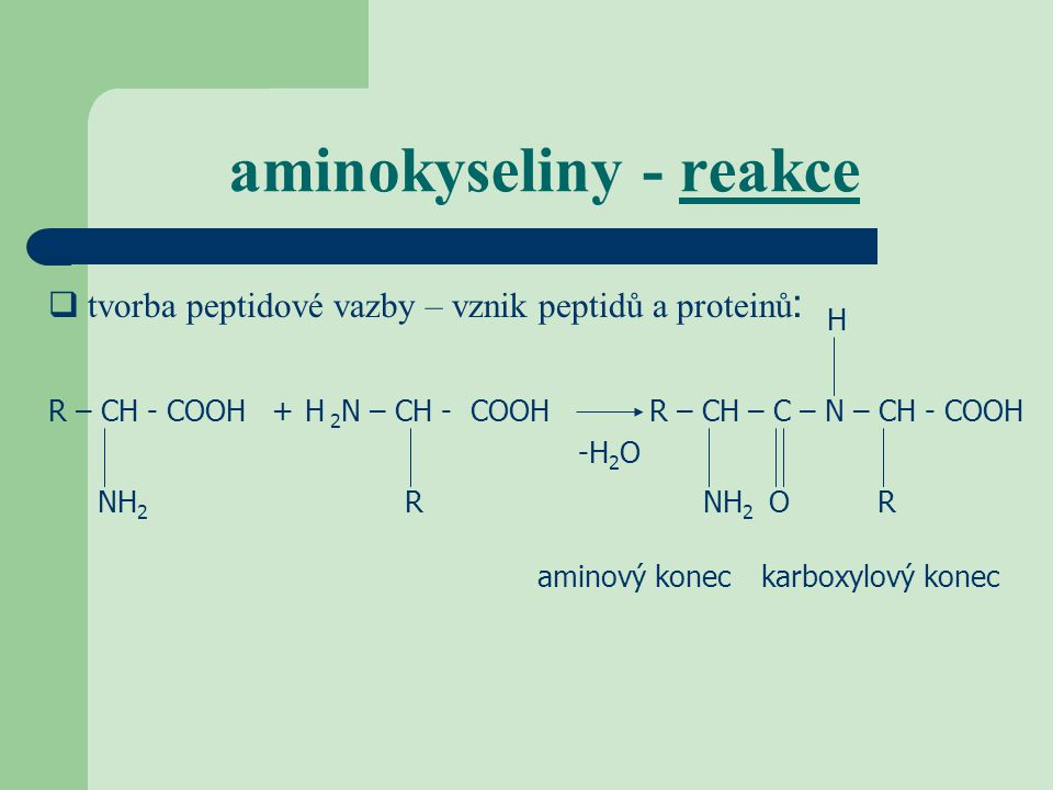 aminokyseliny - reakce  tvorba peptidové vazby – vznik peptidů a proteinů : R – CH - CO NH 2 OH+ 2 N – CH - COOHR – CH – C – N – CH - COOH NH 2 RRO H