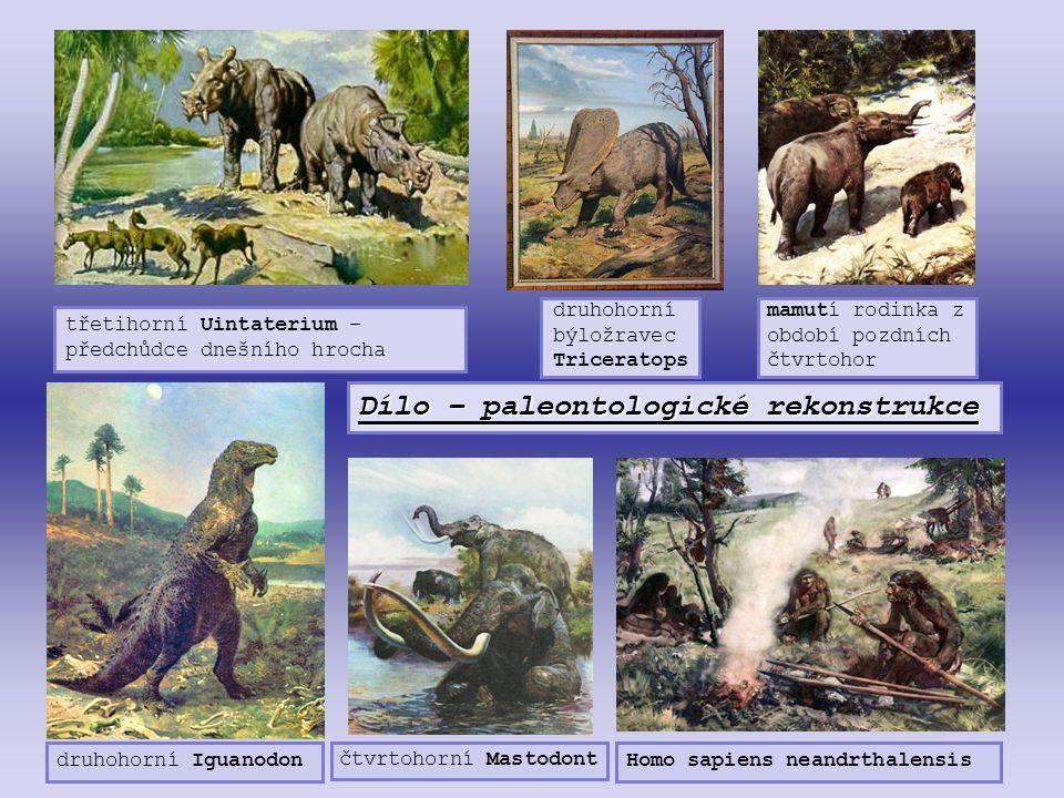 Dílo – paleontologické rekonstrukce třetihorní Uintaterium – předchůdce dnešního hrocha druhohorní býložravec Triceratops mamutí rodinka z období pozd