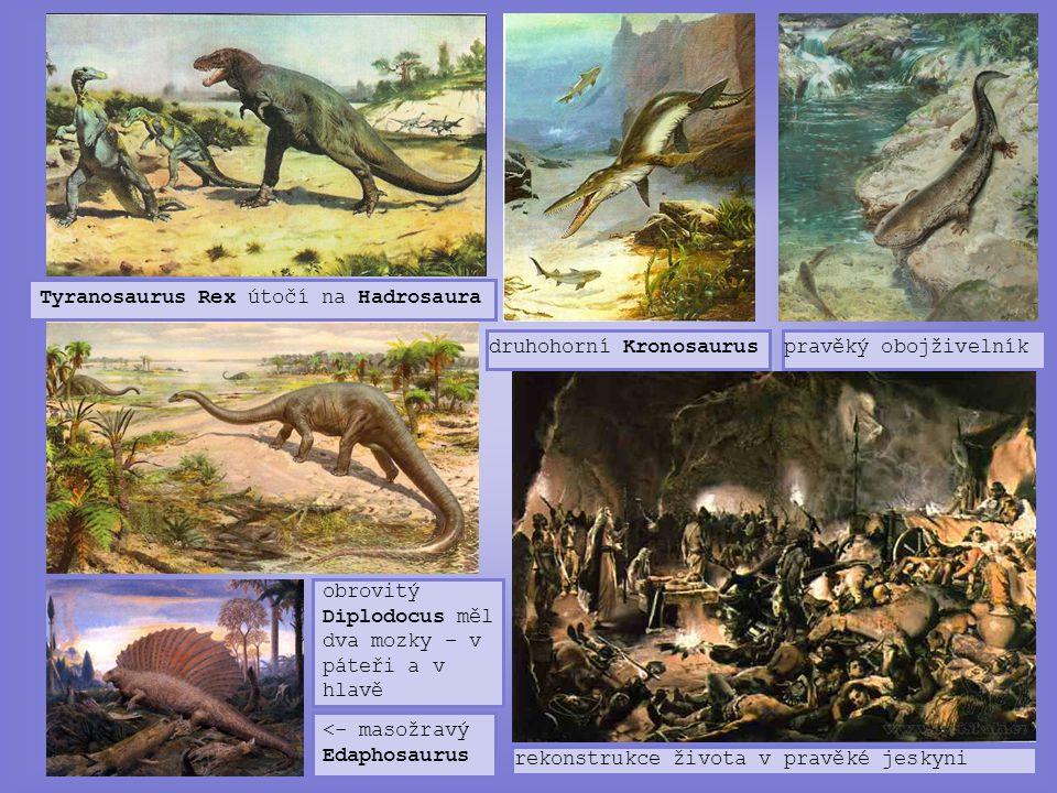Tyranosaurus Rex útočí na Hadrosaura druhohorní Kronosauruspravěký obojživelník <- masožravý Edaphosaurus obrovitý Diplodocus měl dva mozky – v páteři