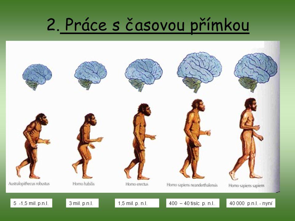 2. Práce s časovou přímkou 5 -1,5 mil. p.n.l.3 mil. p.n.l.1,5 mil. p. n.l.400 – 40 tisíc p. n.l.40 000 p.n.l. - nyní