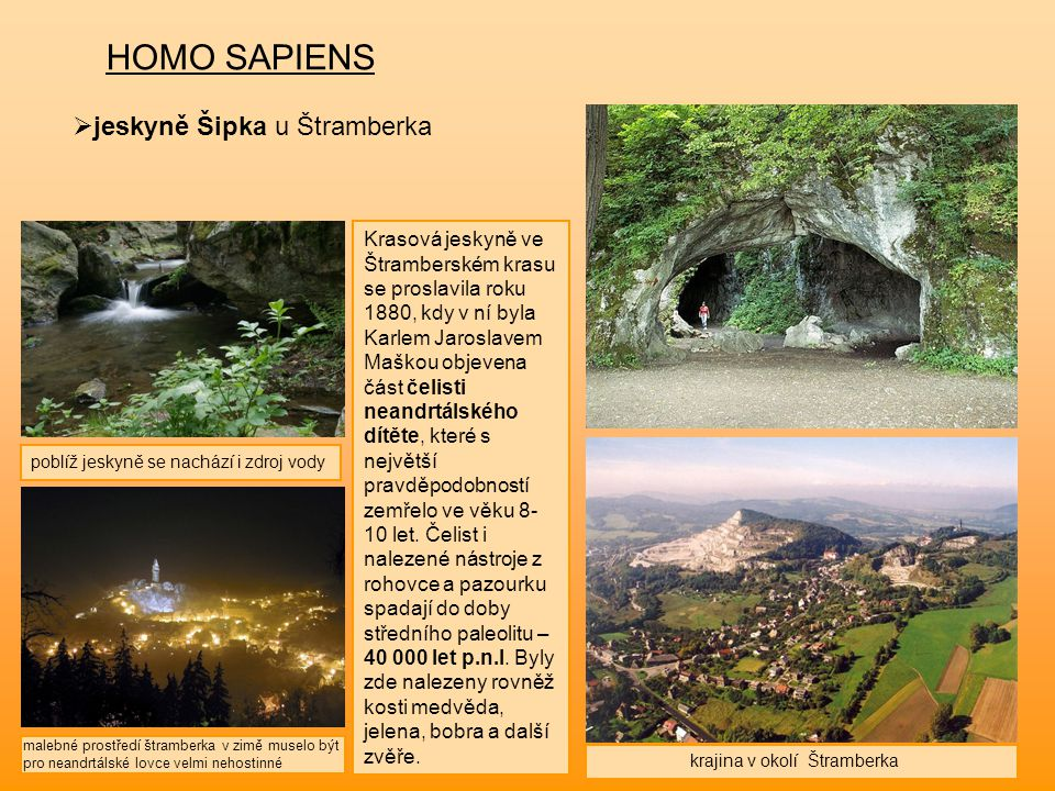 HOMO SAPIENS  jeskyně Šipka u Štramberka Krasová jeskyně ve Štramberském krasu se proslavila roku 1880, kdy v ní byla Karlem Jaroslavem Maškou objeve