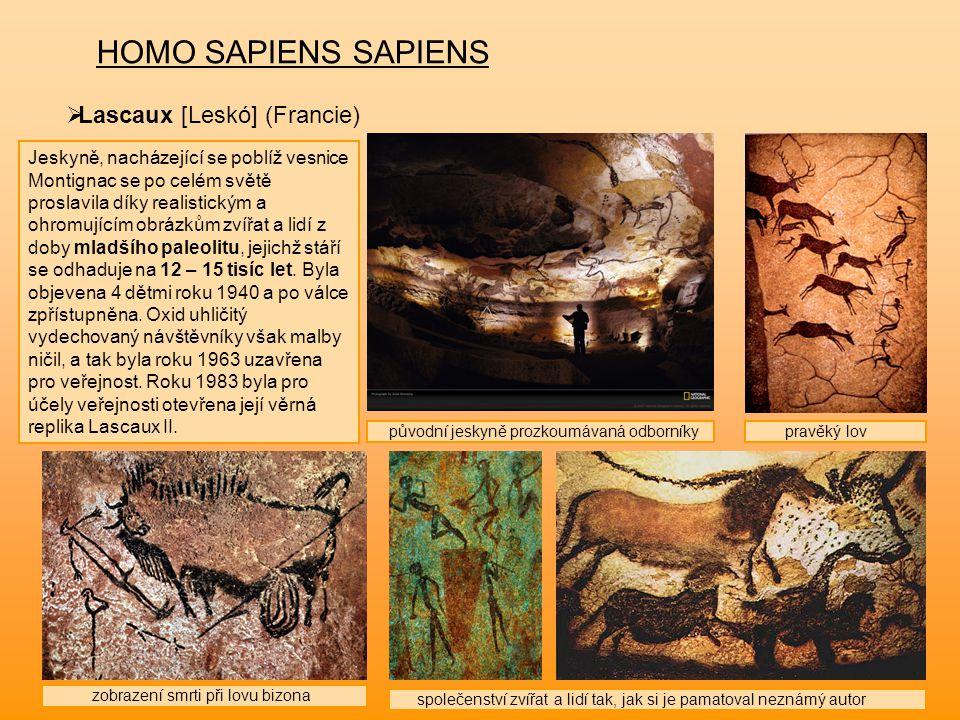 HOMO SAPIENS SAPIENS  Lascaux [Leskó] (Francie) Jeskyně, nacházející se poblíž vesnice Montignac se po celém světě proslavila díky realistickým a ohr
