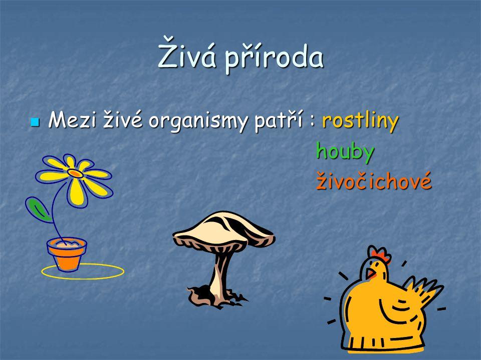 Živá příroda Mezi živé organismy patří : rostliny Mezi živé organismy patří : rostliny houby houby živočichové živočichové