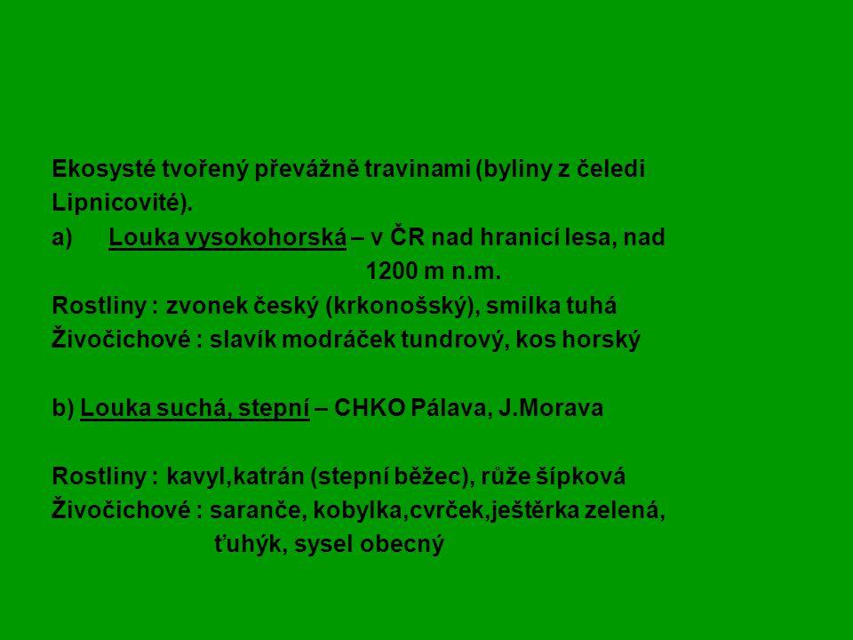 Zápis - LOUKA Ekosysté tvořený převážně travinami (byliny z čeledi Lipnicovité).
