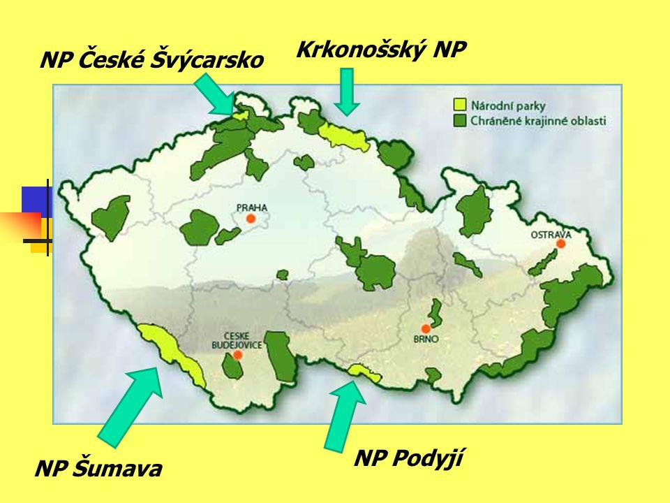 Krkonošský NP NP České Švýcarsko NP Šumava NP Podyjí
