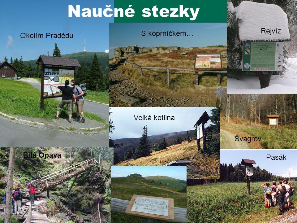 Okolím Pradědu S koprníčkem… Švagrov Pasák Rejvíz Naučné stezky Velká kotlina Bílá Opava