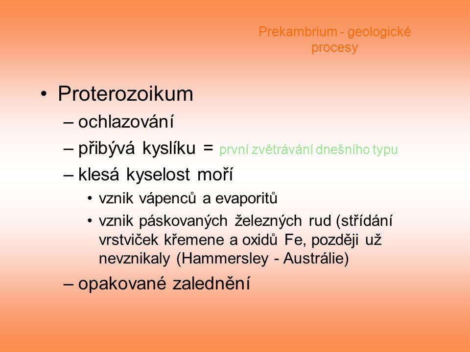 Prekambrium - geologické procesy Proterozoikum –ochlazování –přibývá kyslíku = první zvětrávání dnešního typu –klesá kyselost moří vznik vápenců a eva